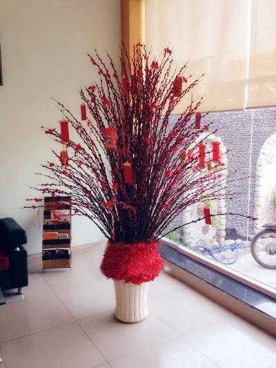 Bình hoa tầm xuân - Nhà nhà đón xuân