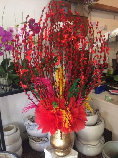 Bình hoa tầm xuân - Xuân trọn niềm vui