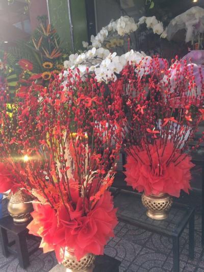Bình hoa tầm xuân - May mắn tràn đầy