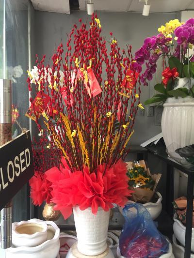 Bình hoa tầm xuân - Thần tài gõ cửa