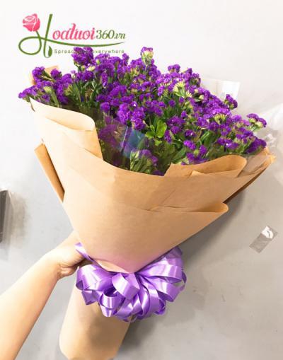 Tìm hiểu nguồn gốc đặc điểm và ý nghĩa hoa salem