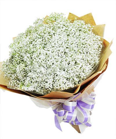 Bó hoa Tình trong trắng