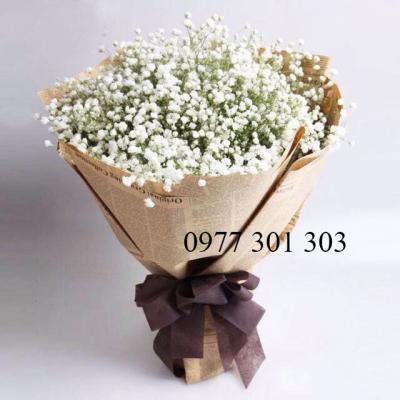 Hoa baby-Trắng tinh khôi