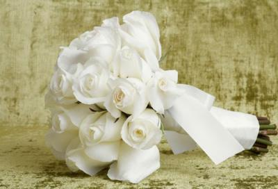 Truyền thuyết về hoa hồng trắng