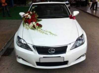 Xe hoa cưới - Tình yêu mãnh liệt