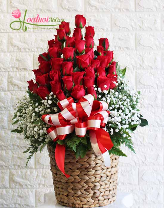 Giỏ hoa chúc mừng sinh nhật hồng đỏ kết hợp baby