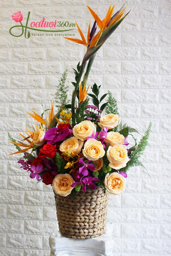 giỏ hoa tươi hy vọng
