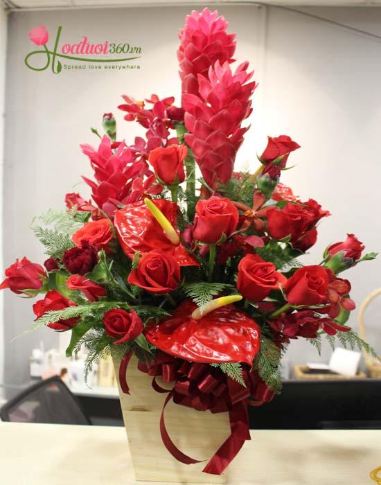 Hoa cắm hộp gỗ mang màu đỏ rực rỡ