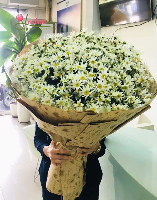 Bó hoa cúc họa mi- Nồng nàn Hà Nội
