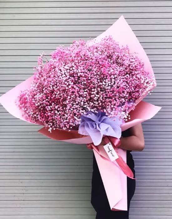 Top 99+ mẫu hoa baby hồng ĐẸP - ĐỘC ĐÁO nhất