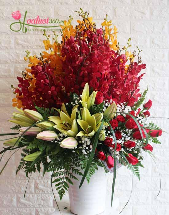 Hoa khoe sắc mừng ngày thầy thuốc Việt Nam