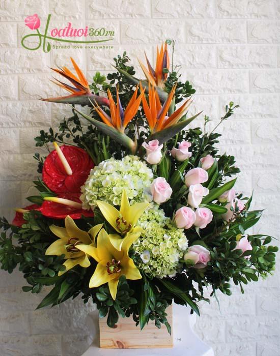 Lẵng hoa cẩm tú cầu kết hợp cùng các mẫu hoa khác