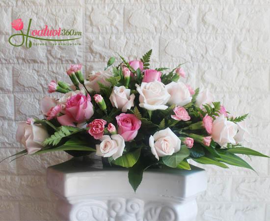 Hoa để bàn rực rỡ màu sắc