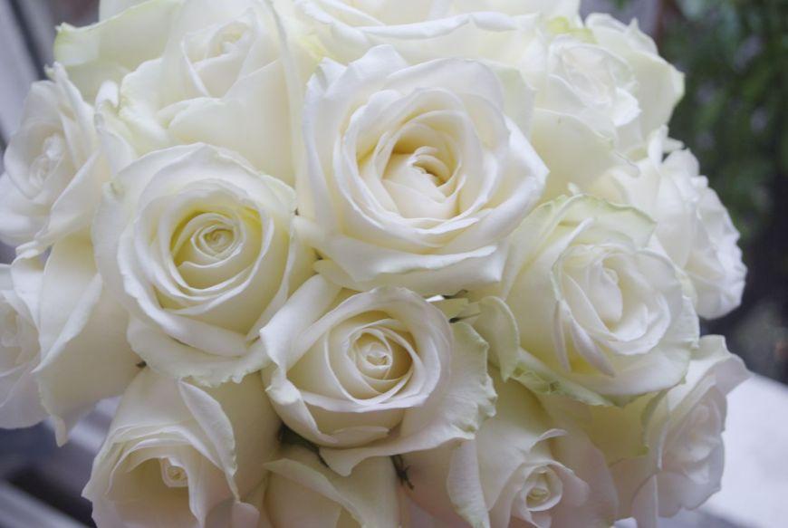 Bó hoa hồng trắng mang nhiều ý nghĩa