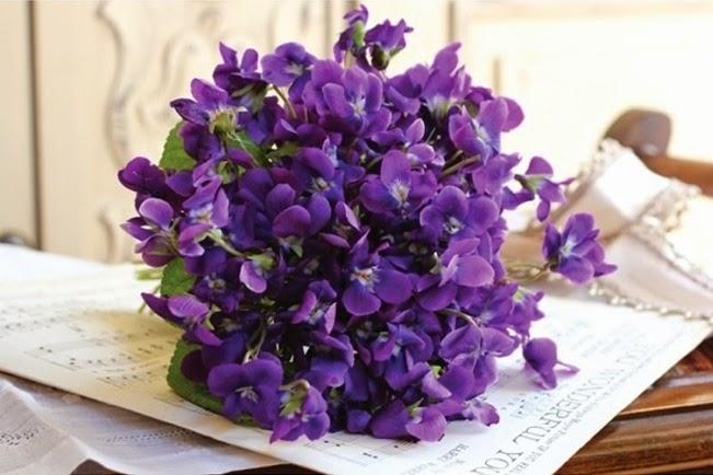 Kết quả hình ảnh cho bó hoa violet