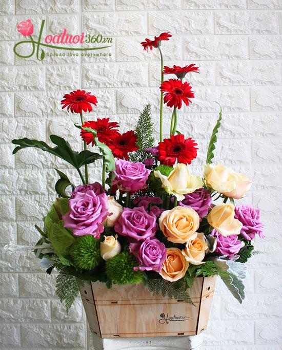 hộp hoa chúc mừng đẹp nhất