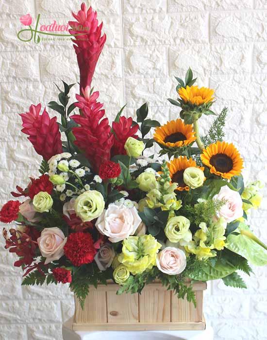 Hoa chúc mừng  - Điều tốt đẹp