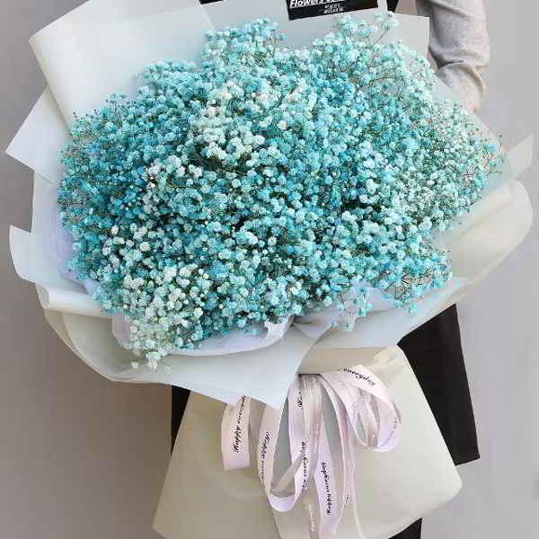 Hoa baby xanh – bình yên đến lạ!