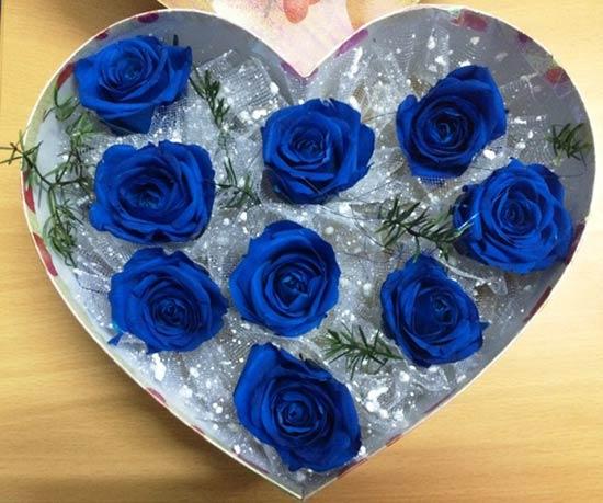 Hộp hoa hồng xanh trái tim dành tặng nàng