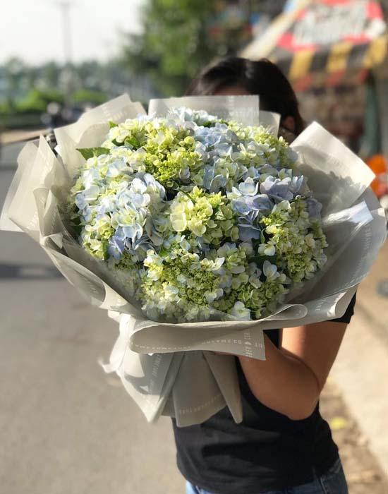 Bó hoa cẩm tú cầu xin lỗi người yêu