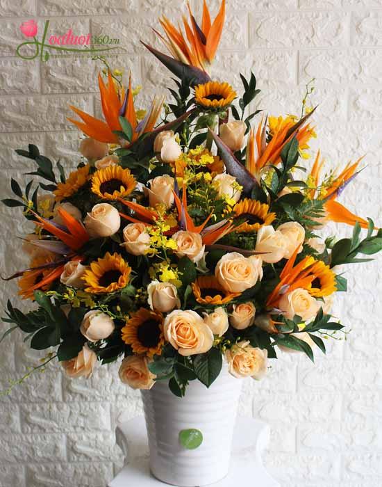 Hoa mừng ngày thầy thuốc Việt Nam