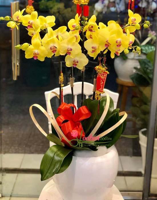 Hoa chúc mừng năm mới sang trọng