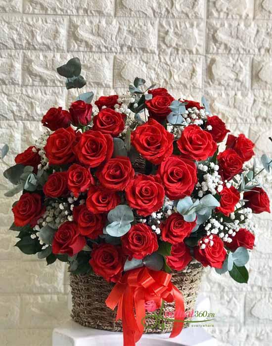 Giỏ hoa chúc mừng hoa hồng đỏ kết hợp baby trắng độc đáo