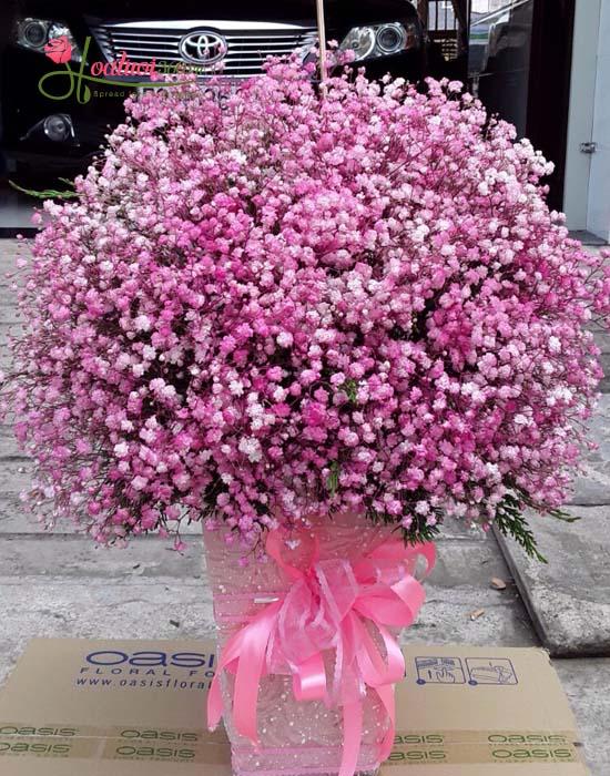 Bó hoa baby hồng dịu dàng và lãng mạn đốn tim nhiều người