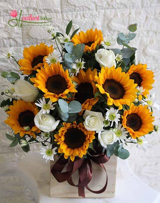Bó hoa hướng dương chúc mừng đẹp nhất