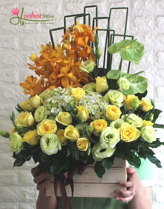 Những loại hoa nên chọn chúc mừng ngày thầy thuốc Việt Nam