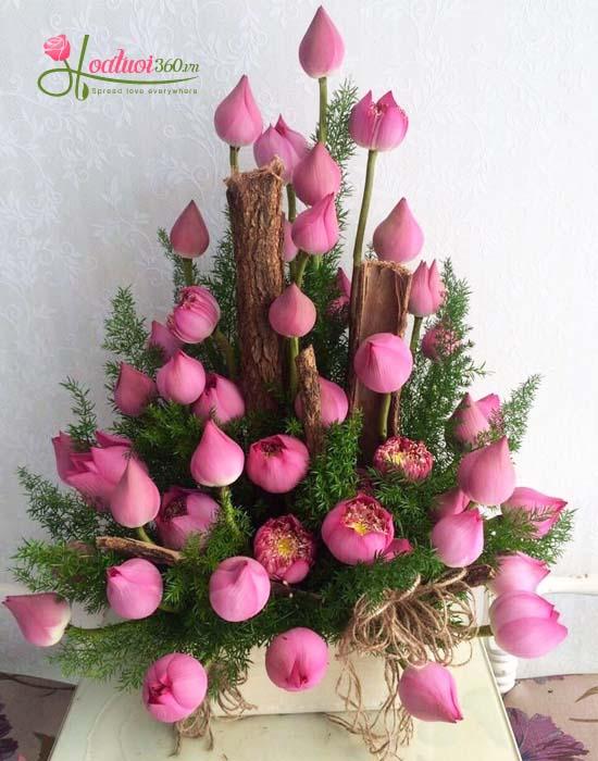 Hoa sen chúc mừng - tôn kính hoa tươi nguyễn thị thập