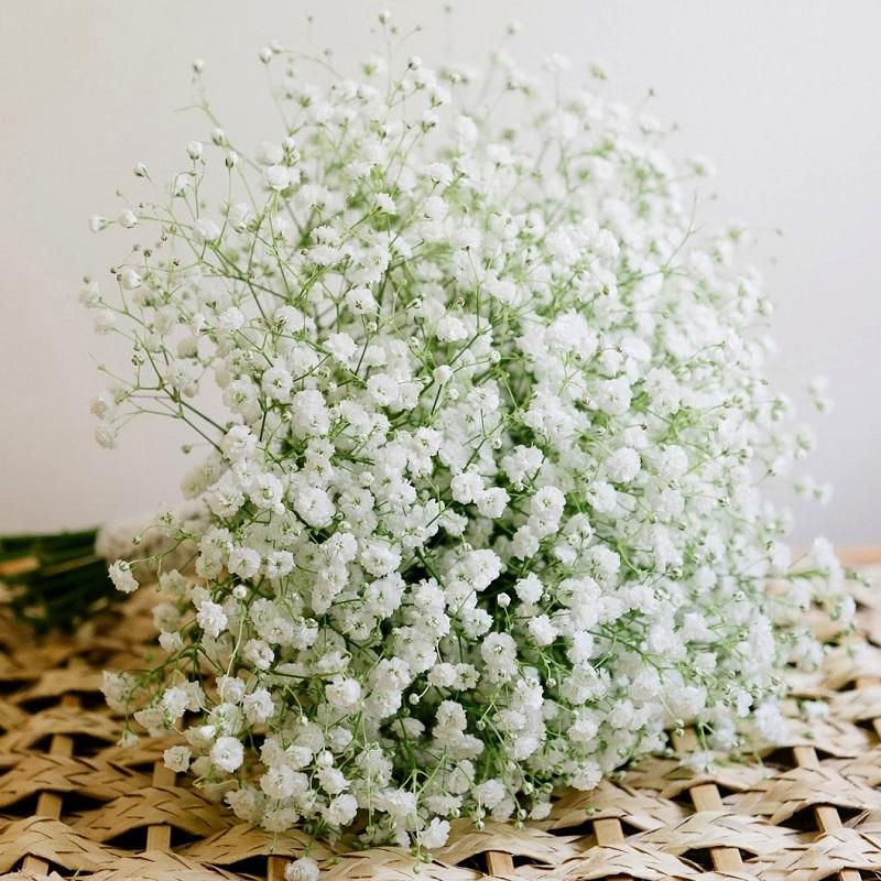 Hoa cầm tay cô dâu đẹp